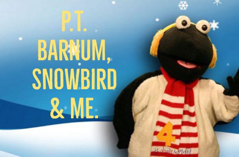 P.T. Barnum, Snowbird & Me